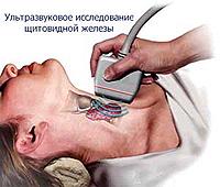 Норма узи щитовидной железы