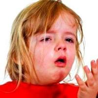 Аллергия на Пыль и Пульцу у Ребенка
