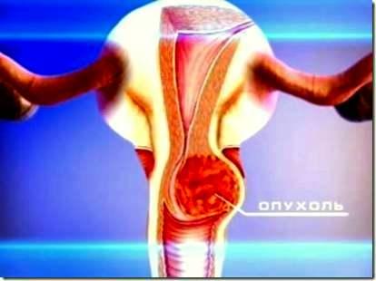 Гинеколог  Онлайн консультации гинеколога  03 Онлайн